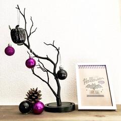 シンプルインテリア/プチDIY/フォトフレーム/ハロウィンツリー/ブランチツリー/ハロウィン/... ハロウィンだけでなく クリスマスまで長く…