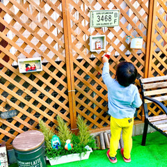 カインズホーム/ラティスフェンス/人工芝マット/お庭DIY/お庭/クリスマス仕様/... クリスマスがやってきた!コンテストに参加…(3枚目)