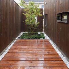 デッキ/庭・ガーデニングリフォーム/庭 デッキから中庭を見ます。
