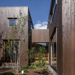 外観/外壁/庭 各居室を繋ぐ渡り廊下が見えます。