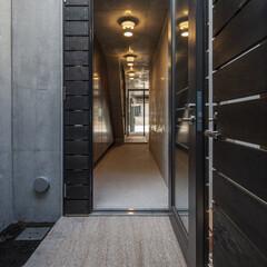 玄関/コンクリート/照明、土間 玄関から土間空間を見ます。