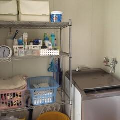 洗濯機ラック/洗濯機置き場/洗濯機周り/洗濯機/平成最後の一枚