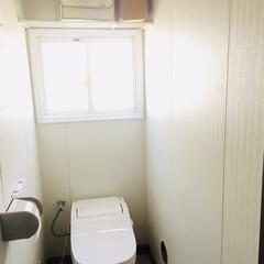 アラウーノ/シンプルトイレ/トイレ