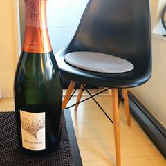 ホームパーティー/イームズチェア/イームズ/ホットプレート/ワイン/椅子 /... 友人宅でホームパーティー。夫婦2組、昼過…