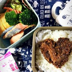 お昼ごはん/おべんとう/春のフォト投稿キャンペーン こんにちは〜やっとお昼やすみです(*´꒳…