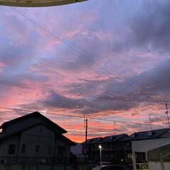 風景写真/空/夕方の空 7月27日19時の空(*´꒳`*)♡ オ…(1枚目)