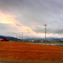 夕焼け/景色/空 *昨晩19時* 車窓からの眺め(三男目線…(1枚目)