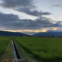 風景写真/夕方の空/空 7月28日19時の空(*´꒳`*)♡  …(1枚目)