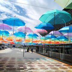 景色/道の駅/アンブレラ/傘 *梅雨の晴れ間*  〜13時頃の景色〜 …(3枚目)