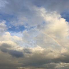 虹/空/梅雨空 🌈見つけました(*´꒳`*)♪ 一緒窓に…