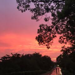空/夕焼け空/おでかけ/おでかけワンショット 雨上がりの夕焼け(*´꒳`*)❤︎ 異国…