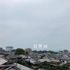 風景/景色/屋上からの眺め/ヤンマーミュージアム *屋根の上にビオトープ(*´꒳`*)* …(3枚目)