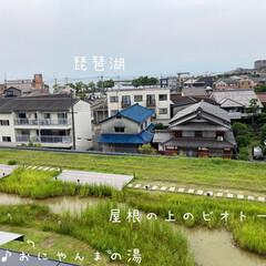 風景/景色/屋上からの眺め/ヤンマーミュージアム *屋根の上にビオトープ(*´꒳`*)* …(1枚目)
