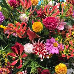 駅ビルリニューアル/春のフォト投稿キャンペーン/ありがとう平成/おでかけ ステキな花(*´꒳`*)❤︎ 花屋さんが…