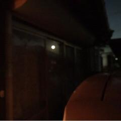 お月さま/花火/今夜の空(*´꒳`*)/春のフォト投稿キャンペーン 今夜の花火(*´꒳`*)4月20日✨ 夕…(4枚目)