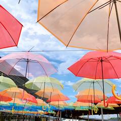 景色/道の駅/アンブレラ/傘 *梅雨の晴れ間*  〜13時頃の景色〜 …(1枚目)