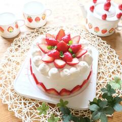 こどもの日スイーツ/いちごケーキ型ティーカップセット/フェィクグリーン/いちごケーキ/GW/LIMIAスイーツ愛好会/... 久しぶりに、いちご🍓ケーキ🎂を作りました…