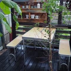 キャンプ用品/カフェスペース/カフェ風インテリア/観葉植物のある暮らし/リビングの延長/ウッドデッキ/... ウッドデッキにキャンプ用の椅子とテーブル…