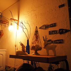 インスタグラムやってます/ブログ書いてます/うららかものづくりCafe/ライトアップ/モロッコ風/漆喰/... クリスマスのアイテムのフォト、最後に一つ…