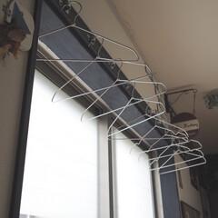 ワッツ/ハンガー/部屋干し/洗濯どうしてる?/雑貨/暮らし/... 先程のハンガーを廊下の部屋干しスペースに…