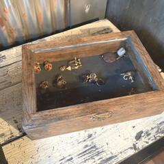 アンティークワックス 120g ターナー色彩 | ターナー(ワックス)を使ったクチコミ「セリアの標本箱、 インテリアウッドケース…」