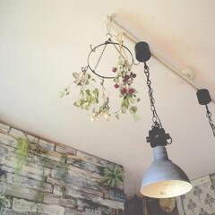 アイデア投稿もしています/インスタグラムやってます/ブログ書いてます/うららかものづくりCafe/ドライフラワー/天井/... おはようございます。  久々に、上の方。…