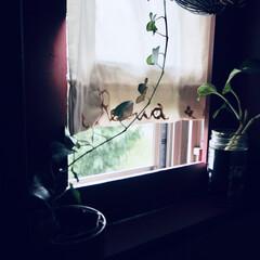 アイデア投稿もしています/インスタグラムやってます/ブログ書いてます/うららかものづくりCafe/窓/雨季ウキフォト投稿キャンペーン/... キッチンの小窓には、 diyで作った赤い…