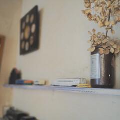 ドライフラワー/飾り棚/トイレ/DIY/雑貨/住まい/... トイレの飾り棚です。 ここは、甘辛ミック…
