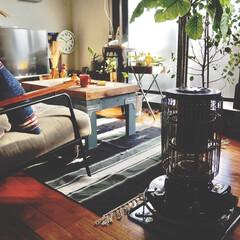 観葉植物のある暮らし/アイデア投稿もしています/インスタグラムやってます/ブログ書いてます/うららかものづくりCafe/リビング/... まだまだ熊本では使わないけれど、 ストー…