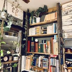 DIY 棚 壁 柱 ツーバイ材用 2×4材用突っぱりジャッキ ユニクロ Walist ウォリスト(その他DIY、業務、産業用品)を使ったクチコミ「こんにちは。  CDの方が多めではありま…」