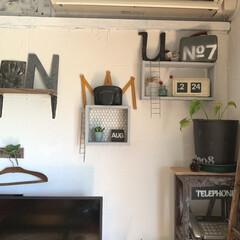 壁面インテリア/壁面ディスプレイ/テレビ後ろ/珪藻土/置き時計/twemco/... テレビの後ろの方の壁に、 珪藻土を塗って…