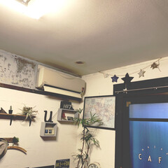 窓/観葉植物/アイデア投稿もしています/インスタグラムやってます/ブログ書いてます/うららかものづくりCafe/... おはようございます。 9月になりましたね…