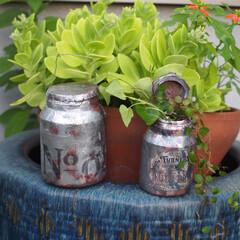 リメボトル/ミルク缶風と和風のコラボ/リメイク/ミルク缶風/ミルクペイント/ターナー色彩/... ミルクペイント の空きボトルでミルク缶風…