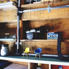 パレット/カフェ風/レトロ/カメラ/ブログも書いてます/うららかものづくりCafe/... カウンター横のパレットを棚にdiyしたス…