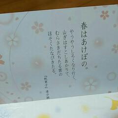 清少納言/生八ツ橋/和菓子 清少納言 春の歌