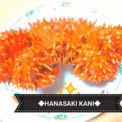 ごちそう/おいしい/根室/北海道/カニ 北海道根室産の花咲蟹 蟹の中で一番好き❤