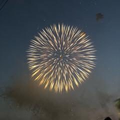 花火大会 毎年家族で見に行く戸田橋花火大会です。 …