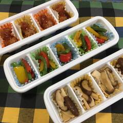 100均/ダイソー/キッチン/フード/グルメ/お弁当/... お弁当用の常備菜。 ダイソーの氷を作るの…
