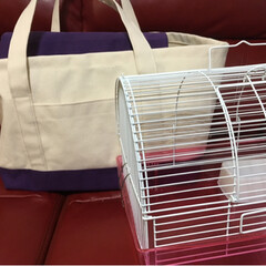 キャンパスバッグ/帆布/キャリーケースカバー/手芸/ペット/おでかけ/... インコのキャリーケースのカバーを作りまし…