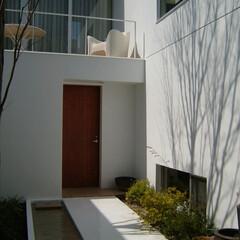 庭/ガーデン/モダン/スタイリッシュ クライアントはシンプルで幾何学的なデザイ…
