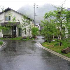 庭/ガーデニング/ナチュラル/パーゴラ/四方津 この分譲住宅ではそれぞれの敷地に塀を設け…