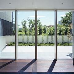 モダン/シンプル/ナチュラル/スタイリッシュ/デザイン/デザイナー/... サッシの真ん中で部屋を2つに仕切ることが…