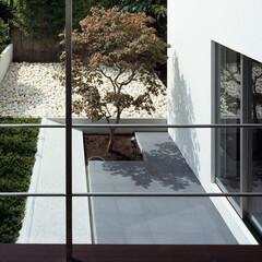 モダン/シンプル/ナチュラル/スタイリッシュ/デザイン/デザイナー/... 建物の形状と窓の向きを検討することで、プ…
