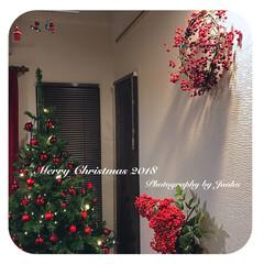 赤い実/サンキライリース/クリスマス/クリスマスツリー/雑貨/インテリア/... 赤い実🍎🍒🍓が大好きなんです。 お店で赤…