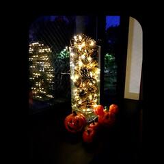 ミニカボチャ/ライトアップ/窓辺/ハロウィン2018/ハロウィン/100均/... お花屋さんを訪れてみると、ハロウィンのミ…(3枚目)