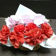 カーネーション/折り紙/和紙/母の日/ハンドメイド 娘と一緒にお義母さんへの母の日プレゼント…
