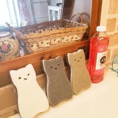 可愛い/猫雑貨/スポンジ/3コインズ/3COINS/猫/... 3COINSの猫スポンジ。 4個300円…