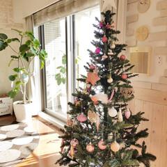 クリスマス/クリスマスツリー/ニトリ おはようございます☀ 朝晩の冷え込みが厳…