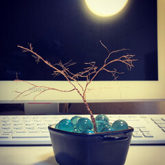ジオラマ/ミニチュア/木 ミニチュアの木を作成。 [材料] ・オー…