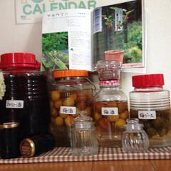 マルベリー 梅 果実酒 ジャム ジ.../100均/セリア/カインズホーム/レシピ 庭で大量に収穫したマルベリーをジャムや、…